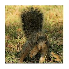 Squirrel tote Tile Coaster