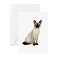 Siamese Cat Greeting Cards (Pk of 10)