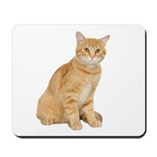 Yellow Cat Mousepad