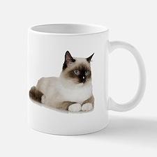 Siamese Kitten Mug