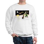 Night Flight/Weimaraner Sweatshirt
