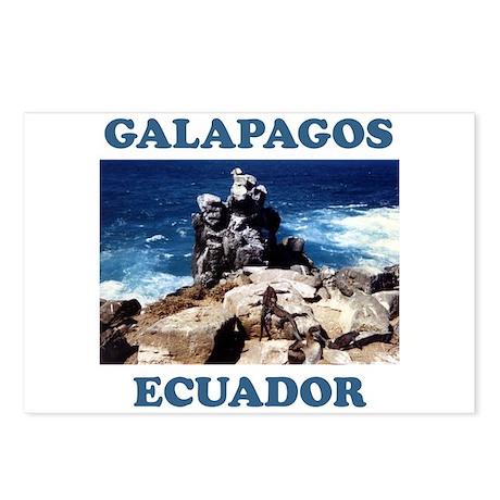GALAPAGOS ECUADOR Postcards (Package of 8)