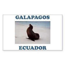 GALAPAGOS SEA LION Rectangle Decal
