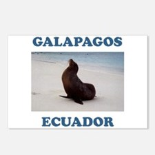 GALAPAGOS SEA LION Postcards (Package of 8)