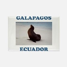 GALAPAGOS SEA LION Rectangle Magnet