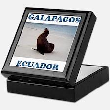GALAPAGOS SEA LION Keepsake Box