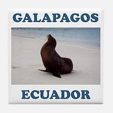 GALAPAGOS SEA LION Tile Coaster