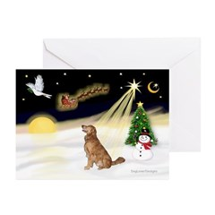 Night Flight/Golden 12 Greeting Cards (Pk of 10)