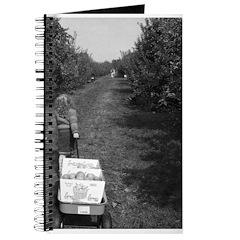 Apple Harvest Journal