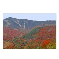 WhiteFace Mountain Postcards (Package of 8)