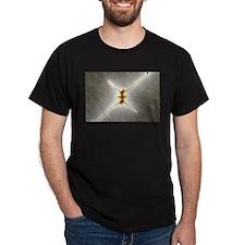 Mandelbrot fractal - StarX - T-Shirt