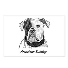 Cute American bulldog Postcards (Package of 8)