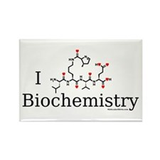 I love Biochemistry Rectangle Magnet