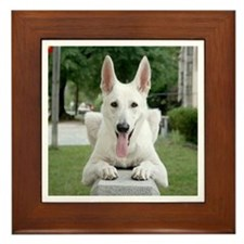 White German Shepard Framed Tile