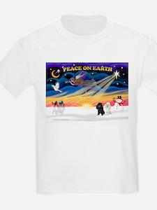 XmasSunrise/2 Poodles T-Shirt