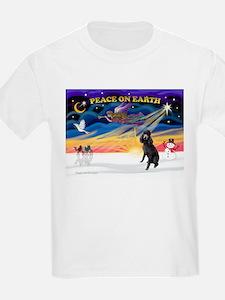 XmasSunrise/Std Poodle T-Shirt
