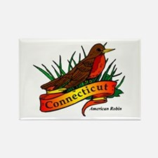 Connecticut Pride! Rectangle Magnet