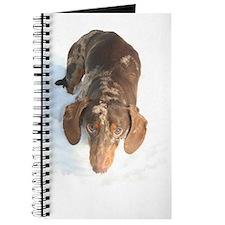 Dachshund Chocolate Dapple Journal