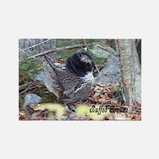 Male Partridge Rectangle Magnet