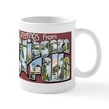 Niagara Falls New York NY Mug