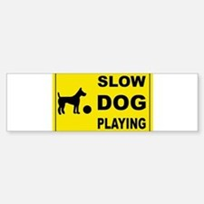 SLOW DOG PLAYING Bumper Bumper Bumper Sticker