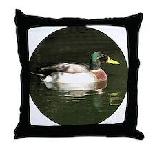 Mallard Duck - Throw Pillow