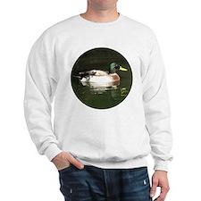 Mallard Duck - Sweatshirt