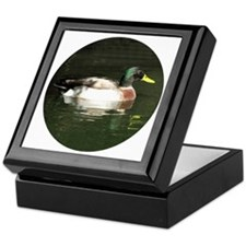 Mallard Duck - Keepsake Box