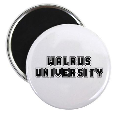 """University 2.25"""" Magnet (10 pack)"""