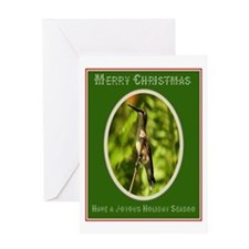 Hummingbird Christmas Greeting Card Greeting Card