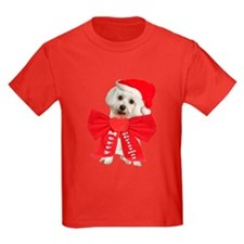 Maltese Wears Red Bow T