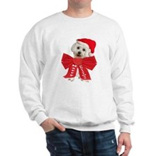 Maltese Wears Red Bow Sweatshirt