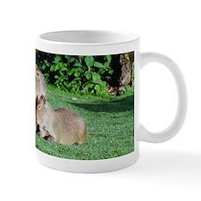 Capybara Snooze Mug