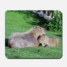Capybara Snooze Mousepad