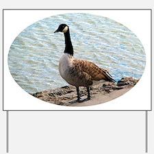 Canadian Goose- Yard Sign