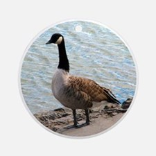 Canadian Goose- Ornament (Round)