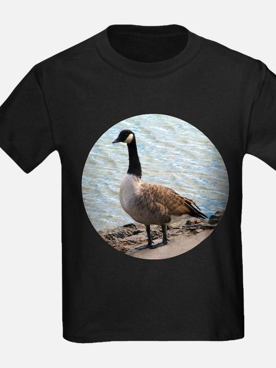 Canadian Goose- T