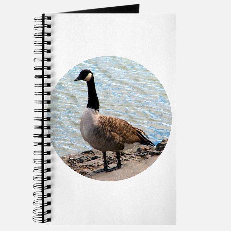 Canadian Goose- Journal