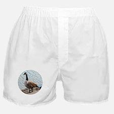 Canada Goose trillium parka replica official - Canada Goose Underwear, Canada Goose Panties, Underwear for Men ...