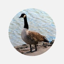 """Canadian Goose- 3.5"""" Button"""