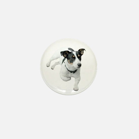 Jack Russel Dog Mini Button