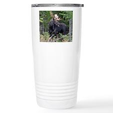Young Moose Travel Mug