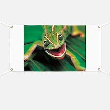 Chameleon Banner