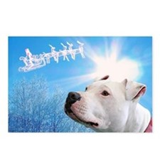 Cute Amstaff Postcards (Package of 8)