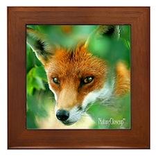 RED FOX Framed Tile