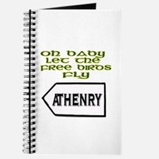 Fields of Athenry Journal