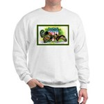 National Birds on Thanksgivin Sweatshirt