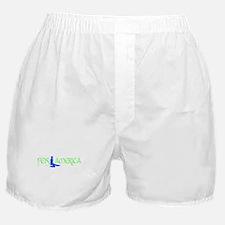 Feis America Male Logo Boxer Shorts