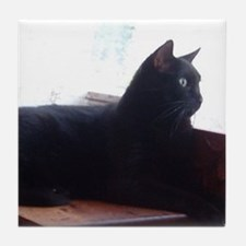 Black Cat In Window Tile Coaster