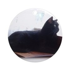 Black Cat In Window Ornament (Round)